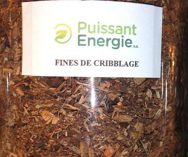 fine_cribblage